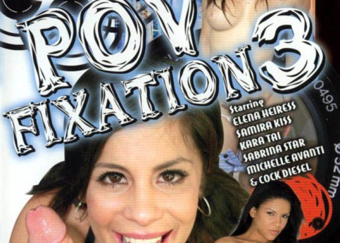 POV Fixation 3