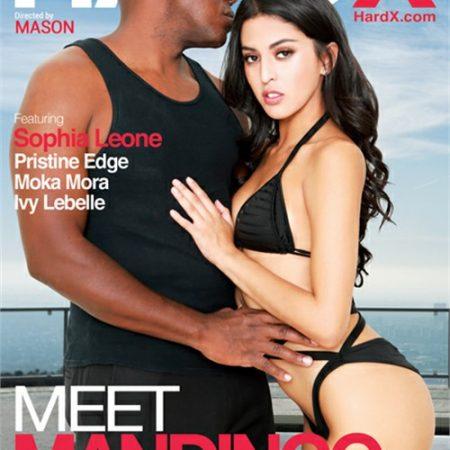 Meet Mandingo 7